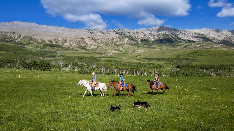 Centre Peak High Country Adventures