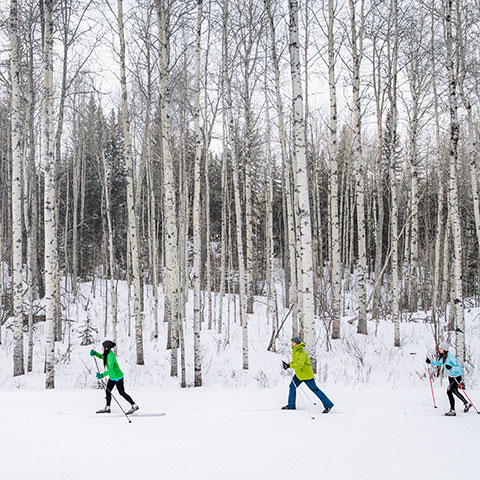 Esquiadores de fondo en Wapiti Nordic Centre, Grande Prairie