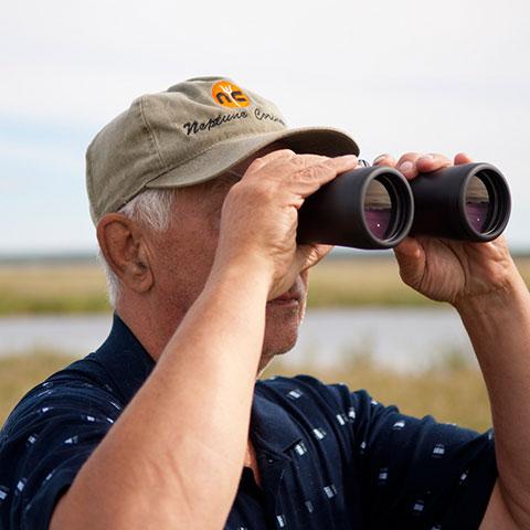 Observando la fauna en Kimiwan Birdwalk Interpretive Centre, al norte de Alberta