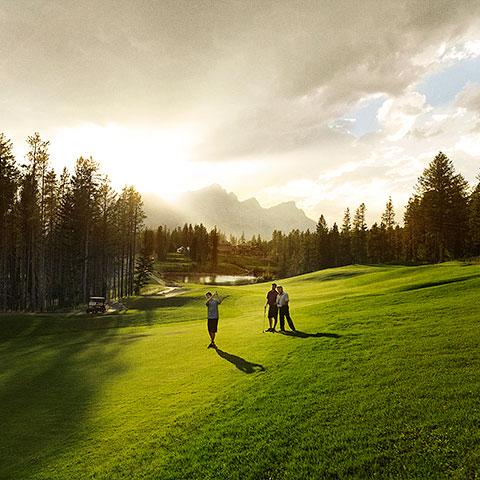 Golfing Silvertip