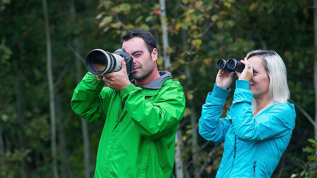 People taking photos