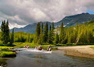 Horseback Riding in Kananaskis Country, Alberta