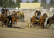 Red Deer Rodeo